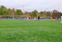 CF Torre Levante - CF Cracks Preferente Alevín